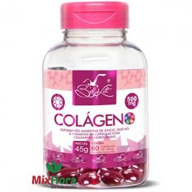 Colágeno Hidrolisado 60 Cápsulas Belkit
